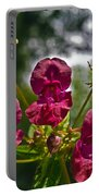Lady Slipper Orchid Dan146 Portable Battery Charger
