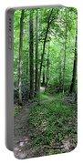 Lakeside Trail Winding Path - Yellowwood Lake Portable Battery Charger