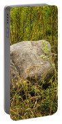 Large Rock And Purple Asters Portable Battery Charger