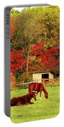 Lazy Autumn Day Portable Battery Charger