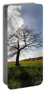 Lone Oak Tree In English Countryside Portable Battery Charger