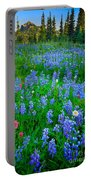 Lupine Cornucopia Portable Battery Charger
