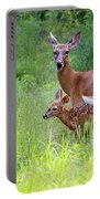 Maine White Tailed Deer Portable Battery Charger
