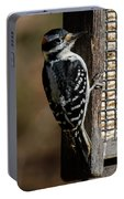 Male Hairy Woodpecker Portable Battery Charger