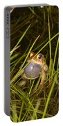 Male Toad Portable Battery Charger