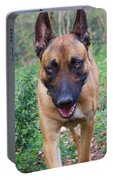 Malinois Portable Battery Charger