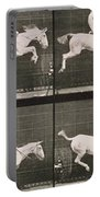 Man And Horse Jumping A Fence Portable Battery Charger