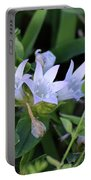 Mexican Clover Portable Battery Charger