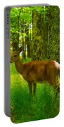 Michigan Whitetail Portable Battery Charger