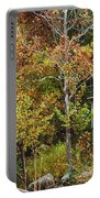 Mill In The Fall Portable Battery Charger