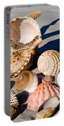 Mix Group Of Seashells Portable Battery Charger