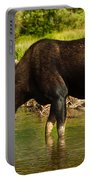 Moose Portable Battery Charger by Sebastian Musial