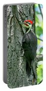 Mr. Pileated Woodpecker Portable Battery Charger
