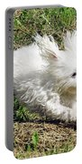 My Dog Portable Battery Charger
