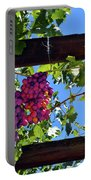 Napa Valley Inglenook Vineyard -2 Portable Battery Charger