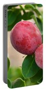 Natal Plums On Branch Portable Battery Charger