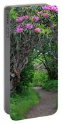 Nature's Tunnel Portable Battery Charger