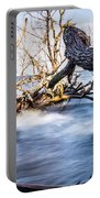 Old Dead Trees On Shores Of Edisto Beach Coast Near Botany Bay P Portable Battery Charger