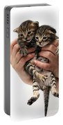 One Week Old Kittens Portable Battery Charger