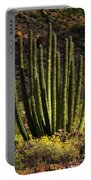 Organ Pipe Cactus  Portable Battery Charger