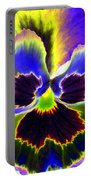 Pansy Power 87 Portable Battery Charger