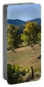 Pastural Setting Portable Battery Charger