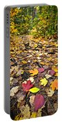 Path In Fall Forest Portable Battery Charger