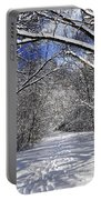 Path In Winter Forest Portable Battery Charger