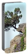 Pine Tree On A Rock Portable Battery Charger