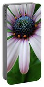 Pink African Daisy Portable Battery Charger