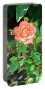 Pink Rose In The Garden Portable Battery Charger