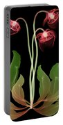 Pitcher Plant Flowers, X-ray Portable Battery Charger