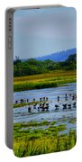 Plum Island Portable Battery Charger
