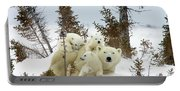 Polar Bear Ursus Maritimus Trio Portable Battery Charger