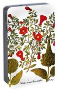 Pomegranate, 1613 Portable Battery Charger