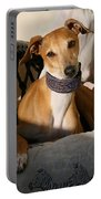 Portrait Of An Italian Greyhound Portable Battery Charger