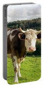 Posing For The Camera Portable Battery Charger