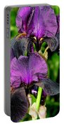 Purple Passion Portable Battery Charger