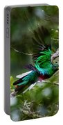 Quetzal In Costa Rica Portable Battery Charger