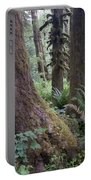 Quinault Rain Forest 3152 Portable Battery Charger