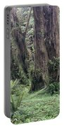 Quinault Rain Forest 3156 Portable Battery Charger
