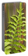 Rainbow Eucalyptus And Fern Portable Battery Charger
