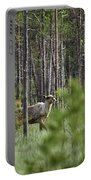 Rare And Wild. Finnish Forest Reindeer Portable Battery Charger