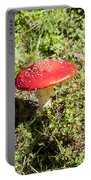 Red And White Potted Toadstool Portable Battery Charger