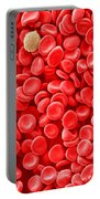 Red Blood Cells, Sem Portable Battery Charger