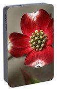 Red Dogwood Portable Battery Charger