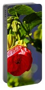 Scarlet Mallow At Pilgrim Place In Claremont-california- Portable Battery Charger