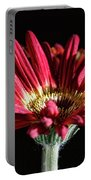 Red Gerbera 1 Portable Battery Charger