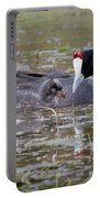 Red Knobbed Coot Portable Battery Charger