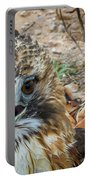 Red-tailed Hawk -5 Portable Battery Charger